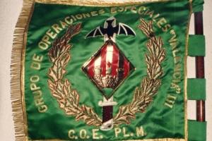 8-GOE-III-COE-PLM-2