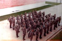 COE 61 R1981